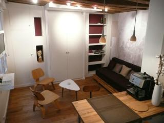 Purple studio in the center of paris - Paris vacation rentals