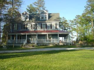 Classic Colonial - almost 5,000 sf - Stunning, Newer Chesapeake Waterfront Estate, Pool - Cambridge - rentals
