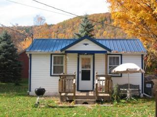 Bungalow in the Fall - Catskill Bungalow, Cozy Getaway Cabin for up to 3 - Windham - rentals