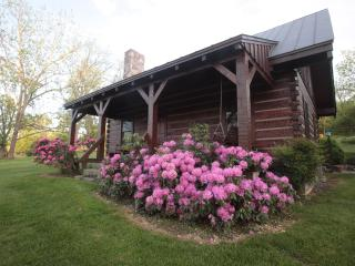 2 bedroom Cabin with Dishwasher in Natural Bridge - Natural Bridge vacation rentals