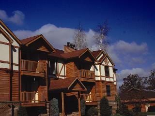 Ski Harbor #39 - McHenry vacation rentals