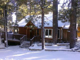 Pine Rock Cabin, Pool Table, Walk to Slopes/Golf - City of Big Bear Lake vacation rentals