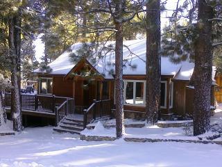 Pine Rock Cabin, Pool Table, Walk to Slopes/Golf - City of Big Bear Lake vacation rentals