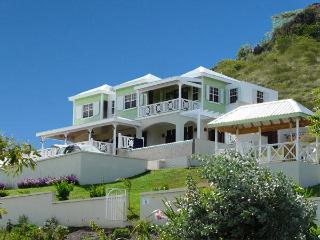 Luxury Caribbean Villa, large pool, sandy beach - Turtle Beach vacation rentals