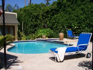 Private backyard pool for your enjoyment. - Moroccan Inspired Pool  Villa in Palm Springs - Palm Springs - rentals