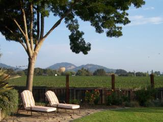 NAPA VALLEY 4 BED 3 BATH VINEYARD VIEW - Napa Valley vacation rentals
