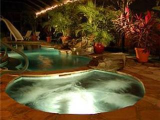 Waterfall pool & jacuzzi in your absolutely private island garden paradise. - Anna Maria Island Private Tropical Garden Home - Holmes Beach - rentals
