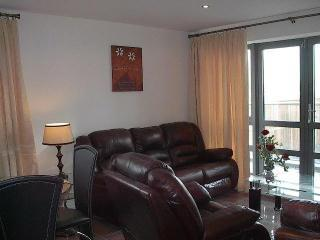 living room - Cork City Ireland 2 bedroom sleeps 4 - Cork - rentals