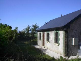 East Cork Rural Traditional Cottage - Cork vacation rentals