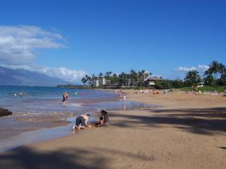 Our beach! - Still Some Dates Open Winter 2017, By KAM I Beach - Kihei - rentals
