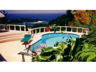 seaview - Chateau en exotica, Port Antonio SPECIAL OFFER!!!! - Port Antonio - rentals