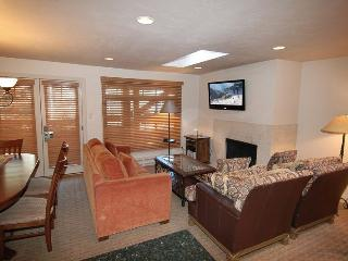 Nice 3 bedroom Condo in Aspen - Aspen vacation rentals