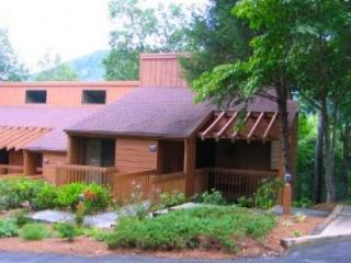 Vacation Rental in Blue Ridge Mountains
