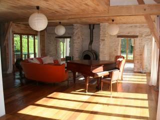 Pamoja, 2 lovely houses by a lake for up to 30 pers! - Loches vacation rentals