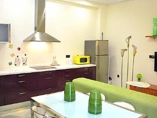 1 Bed Luxury Apart. Centre Seville Spain FREE WIFI - Seville vacation rentals