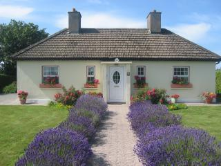 front lavender cottage.JPG - Yellow Shell Cottage Self Catering - Dungarvan - rentals