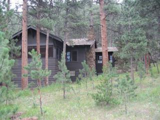 PRIVATE, HOT TUB, WALK TO TOWN, RIVER/MTN VIEWS, WOOD FIREPLACE - Estes Park vacation rentals