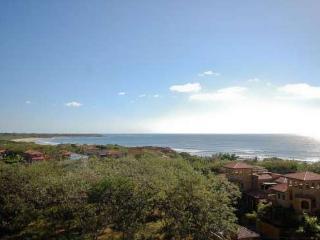 Fantastic Location - Incredible Ocean Views - Tamarindo vacation rentals