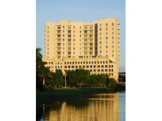 South Miami Luxury Rentals - Coconut Grove vacation rentals