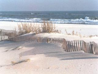 Our Sugar White Sand Beach - PRICES REDUCED FOR AUGUST & SEPTEMBER! CALL NOW!! - Gulf Shores - rentals