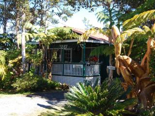 Artist Cottage A Place with Heart,Warmth & Charm. - Volcano vacation rentals