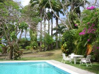 Ambassadors House, garden  and pool - Ambassadors House, comfortable family home, Tobago - Tobago - rentals