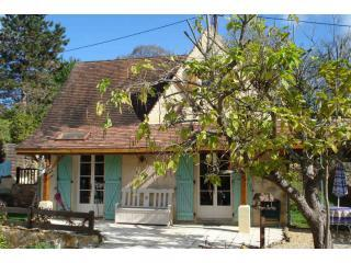 Front Terrace with tree - Stone Cottage-Gite 5km from Sarlat in quiet hamlet - Sarlat-la-Canéda - rentals