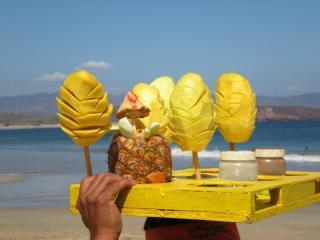 fresh mangos - Spectacular Ocean Front........Quietly Secluded - Mexican Riviera-Pacific Coast - rentals