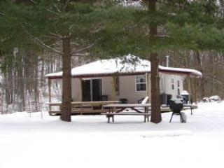 winter - Blue Goose Cottage - cozy cottage near Deep Creek - Friendsville - rentals