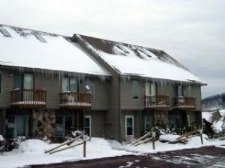 exterior winter - Your 4-level condo; base of WISP, ski slope views - McHenry - rentals