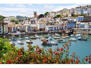 View looking over Brixham Harbour - Grocklenook.Brixham.Holiday cycling&walking heaven - Brixham - rentals