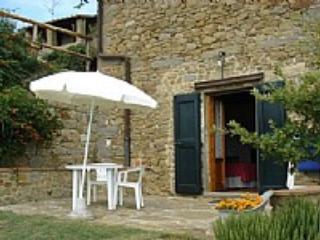 Casa Sambuco - Greve in Chianti vacation rentals