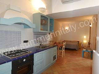 Cozy House with Dishwasher and Balcony - Conca dei Marini vacation rentals