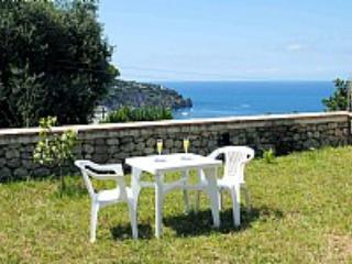 Villa Chiaretta G - Image 1 - Ischia - rentals