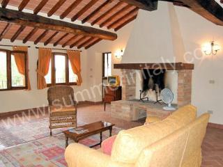 Villa Leopoldo B - Montisi vacation rentals