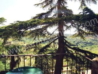 Villa Leopoldo C - Montisi vacation rentals