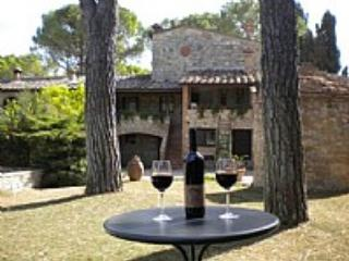 Villa Saveria N - Tuscany vacation rentals