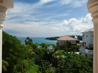 Luxury Ocean-View Villa with Chef, Driver & Butler, Private Beach! - Tower Isle vacation rentals