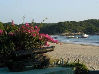 Blue Marlin Villa: Perfect Family/Friends Respite - Treasure Beach vacation rentals
