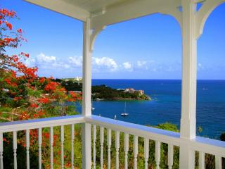 Stay Local.. Stay Stonehouse...Waterfront View.. - Saint Thomas vacation rentals