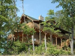 Absolutely Gorgeous Mountain Lodge with Total Privacy and Amazing Views! - Sevierville vacation rentals