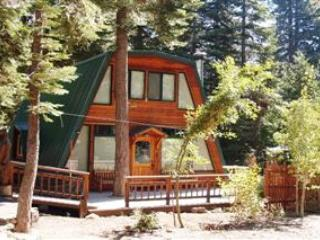 Springsteen Cozy Cabin - Springsteen Cozy Cabin - Tahoe City - rentals
