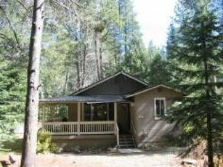 1347 Chinquapin Romantic Cabin Meadow Views - Image 1 - South Lake Tahoe - rentals