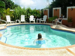 Wonderful Home With Large Private Pool! - Humacao vacation rentals