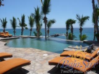 Casa Mariposa - Image 1 - San Jose Del Cabo - rentals