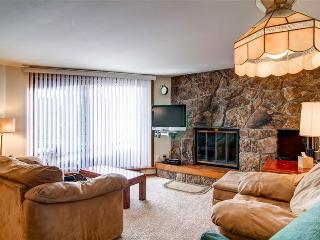 2 BR/2 BA, delightful condo, within walking distance to Lake Dillon Sleeps 7 - Silverthorne vacation rentals