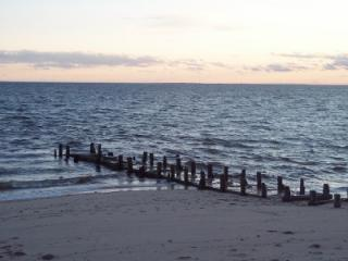 fishing jetty in front of cottage - Top Rated Cape Cod Cottage on the beach, N. Truro - North Truro - rentals