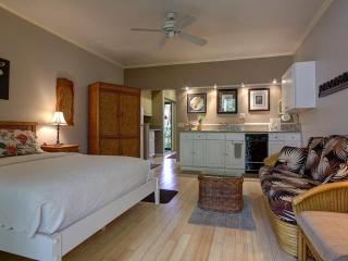 WAILEA SPACIOUS KING STUDIO - Wailea vacation rentals