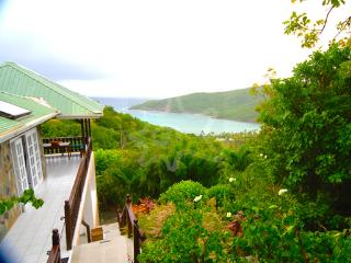 Nice House with Internet Access and Private Outdoor Pool - Bequia vacation rentals