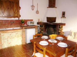 Beautiful villa in Chianti, pool & sunset views - Castellina In Chianti vacation rentals